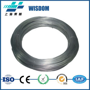 Thermal Spray Moly Wire Supplier pictures & photos