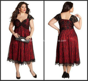 Lace Plus Size Mother of Bride Gowns A-Line Lace Evening Dresses Z7033 pictures & photos