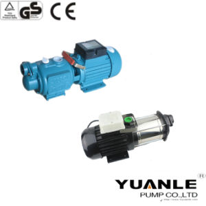 High Pressure Screw Self-Priming Pump with Big Screw (ZGD1100) pictures & photos