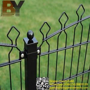 Double Wire Mesh Fence for Garden Fence pictures & photos