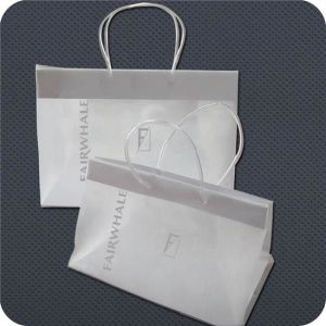Premium Plastic Shopping Bag with Clip Handle pictures & photos