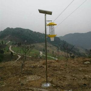 Solar-Powered Outdoor Bug Zapper / Mosquito Killer pictures & photos