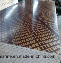 Building Material Marine Plywood Film Faced WBP Glue pictures & photos