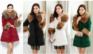 High Quality Whole Raccoon Fur Coat with Rabbit Fur Collar pictures & photos