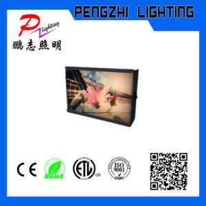 One Piece Sheet Adervertising LED Light Box pictures & photos