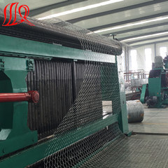 Gabion Wire Mesh, Concrete Wire Mesh pictures & photos