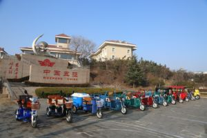 Electric Three Wheeler Garbage Tricycle pictures & photos