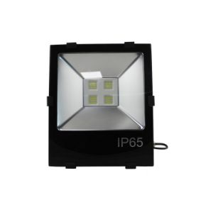 CREE LED Meanwell Power Supply IP65 200W LED Outdoor Floodlight pictures & photos
