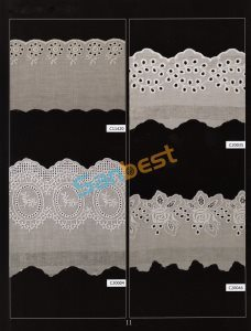 Different Colors Beautiful Cotton Embroidery Lace with Fashion Designs pictures & photos