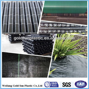 PP Woven Ground Cover/Horticulture Textiles/Landscapefabric Professional Supplier pictures & photos