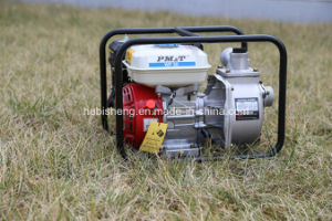 Pm&T Water Pump Wp50 2 Inch pictures & photos