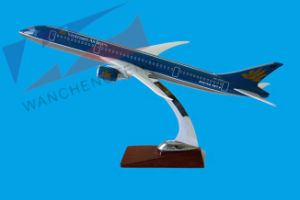 B787 Vietnamairlines pictures & photos