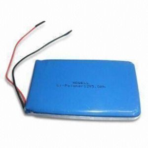 Li-Polymer Rechargeable Battery Pack with 12V, 10600mAh pictures & photos