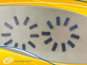Diamond Concrete Segment pictures & photos