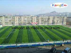Russia Drawing for Good Artificial Grass pictures & photos