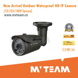 1024p Waterproof Web Camera with Audio Supported (MVT-M3024) pictures & photos