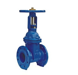 Rising Resilient Soft Seated Gate Valve BS5163 pictures & photos