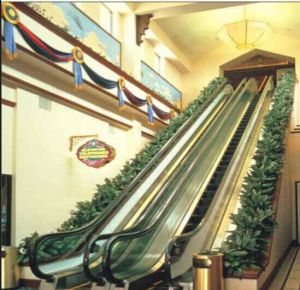 Escalator Price of Made in Zhejiang pictures & photos