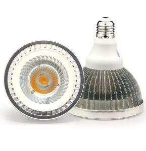 PAR 38 30W COB SMD E27 LED Lamp for Hotel pictures & photos