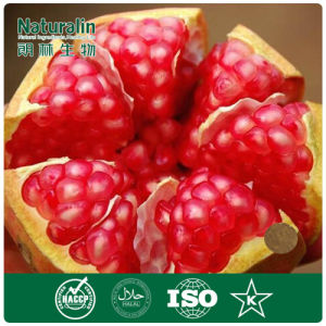 100% Natural Pomegranate Peel Extract Powder (40% Ellagic acid) by HPLC