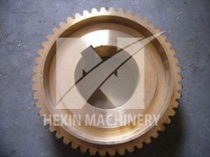 Bronze Casting Worm Gear with CNC Machining pictures & photos