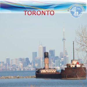 Sea Shipping Agent Service Clc Door to Door to Toronto pictures & photos