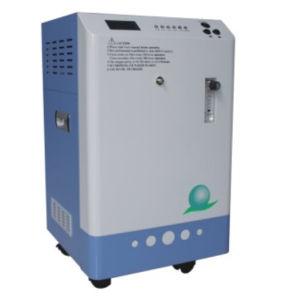 8g, 18g, 28g Portable Medical Ozone Generator/Electrolytic Ozone Generator/Industrial Ozone Generator pictures & photos