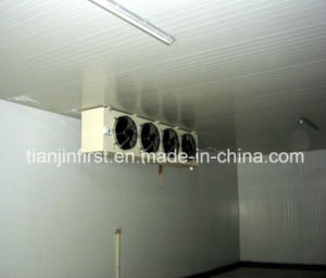 Cold Storage Cold Room Cooling Refrigeration Equipment pictures & photos