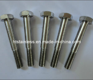 Inconel Series Hex Head Bolts pictures & photos