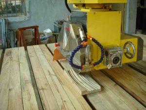Bridge Cutting Machine with Bridge Cutting Machine (B2B004-SP) pictures & photos