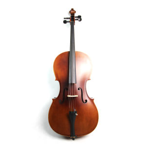 Antique Color Plywood Cello (N-C09) pictures & photos