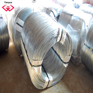 Electro Galvanized Wire (TYH-036) pictures & photos