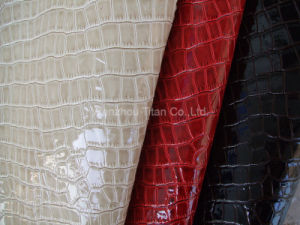 Pu Synthetic Leather for Shoes (DSCF2464)