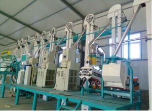 100t Per Day Flour-Milling Machine FTA150 pictures & photos