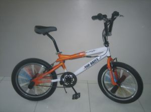 "20"" Steel Frame Freestyle Bike (FS2054) pictures & photos"