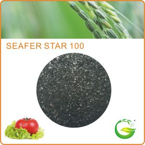 Bio Organic Seaweed Extract Fertilizer pictures & photos