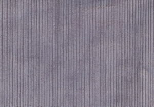 51*132 100%Organic Cotton Corduroy (QDFAB-8647) pictures & photos