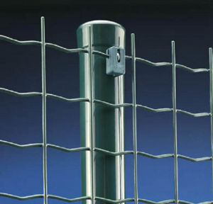 Euro Welded Wire Mesh Fence S942 pictures & photos