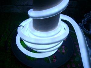 LED Neon Flex (10*24mm)