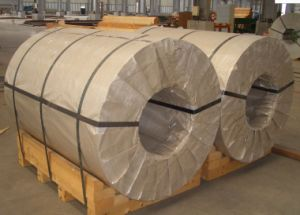 301 Stainless Steel Coil (coil/volumes)
