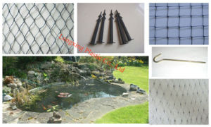 UV Protection Pond Cover Net (PN20) pictures & photos