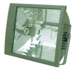 1000W Floodlights, Credible IP66 Flood Lighting Lamps, Spot Light pictures & photos