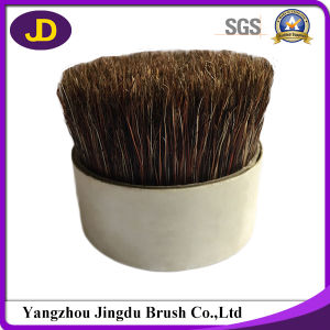 High Quality Chungking Qingdao Pig Bristle pictures & photos