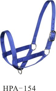 Nylon Webbing Halter with Hardware for Sale