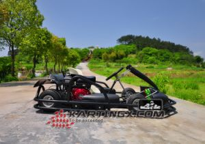 4 Stroke Professional Racing Go Kart Gc2006 with Kart Cordura Racing Suit on Sale pictures & photos