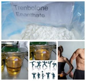 Nature Steroid Powder Parabolan for Muscle Building Trenbolone Enanthate 10161-33-8 pictures & photos