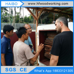 Dx-10.0III-Dx 10cbm Hf Vacuum Timber Wood Drying Machine for Furniture pictures & photos