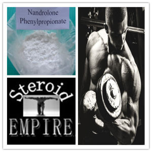 Buy Steroid Nandrolone Phenylpropionate Powder pictures & photos