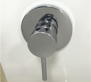 Sanitary Ware Watermark Round Bathroom in-Wall Shower Mixer (HD520) pictures & photos