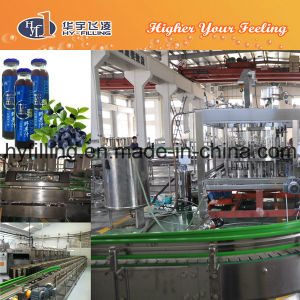 Glass Bottle Blueberry Juice Filling Machine pictures & photos